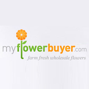 Buy Farm Fresh Wholesale Flowers Online
